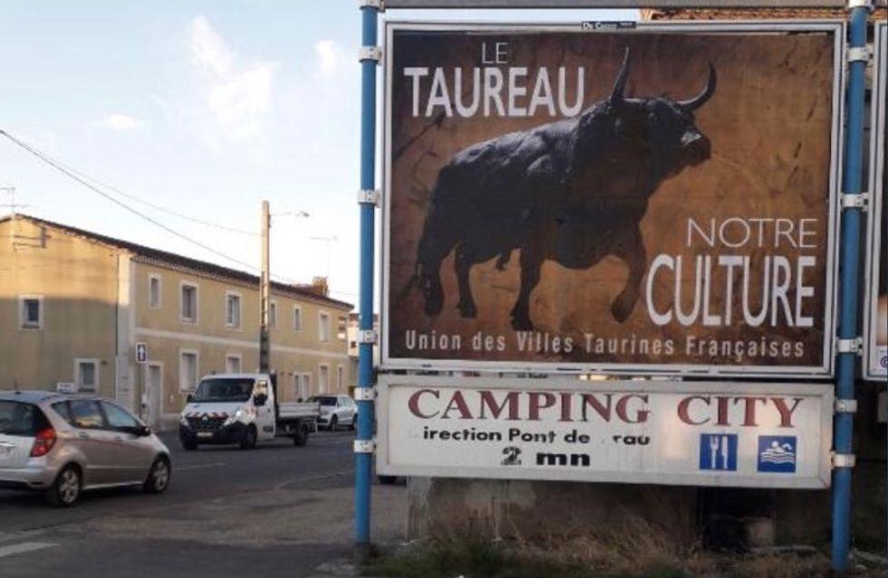 À Bordeaux, des affiches Le taureau, notre culture font polémique