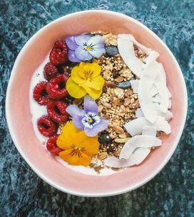 Las propiedades del coco: una fruta muy beneficiosa con olor a verano