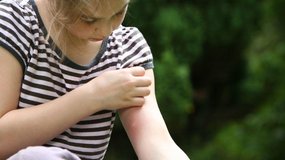 Pourquoi certaines personnes se font-elles plus piquer que d'autres par les moustiques ?