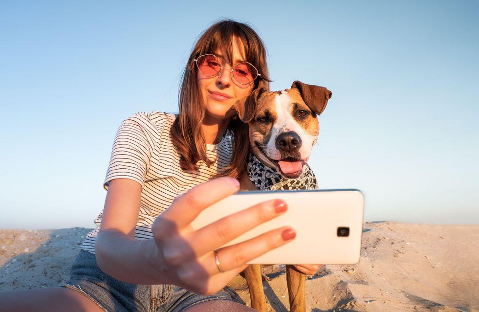 Reisen mit Hund: Tipps für einen entspannten Urlaub für alle