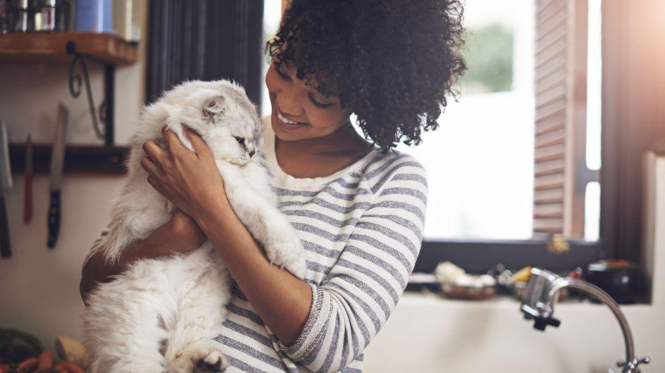 Des scientifiques ont mis au point un vaccin pour stopper l'allergie aux chats
