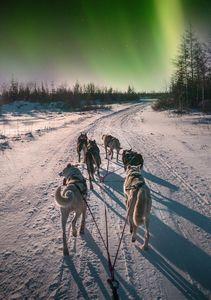 Les aurores boréales au Canada