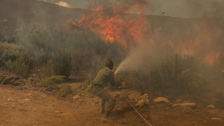 En Afrique, le deuxième poumon vert de la planète est lui aussi en train de brûler