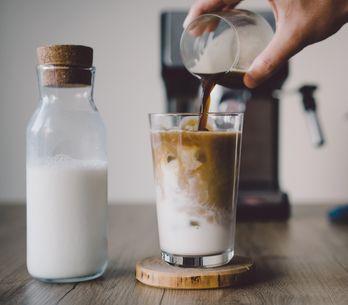 Cold Brew: la guía definitiva para preparar el mejor café frío en casa