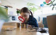 L'école des 3 petits cochons : la première maternelle en paille et en bois à Par