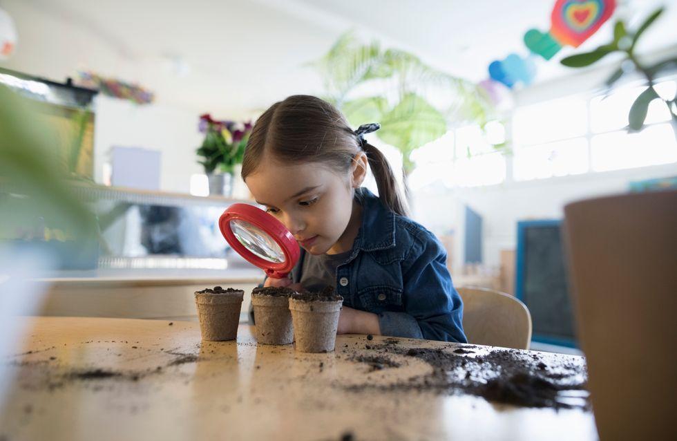 L'école des 3 petits cochons : la première maternelle en paille et en bois à Paris