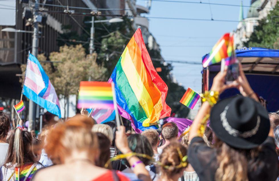 La commission parlementaire valide le droit à l'homoparentalité