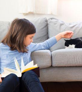 Animaux: réussir la cohabitation avec les enfants