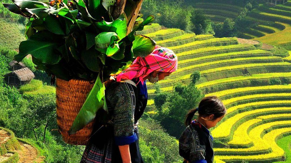 Was ist Fair Trade? Fairer Handel einfach erklärt