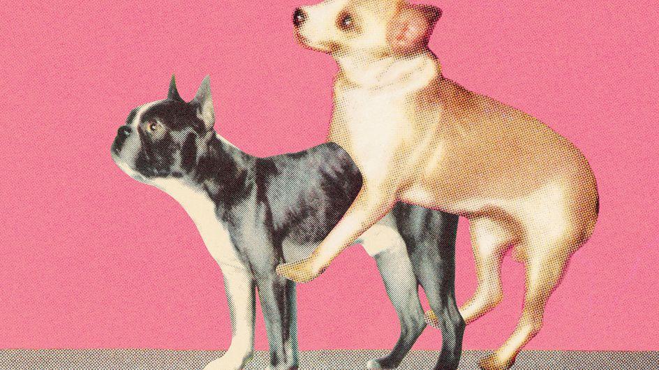 Doggy Style: So wird die Sexstellung noch besser!