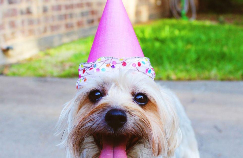 Test: come dovresti festeggiare il tuo compleanno?