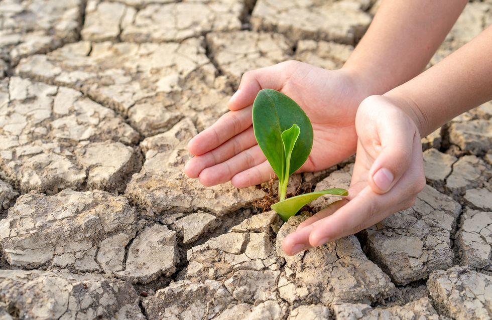 Voici les conséquences du réchauffement climatique sur un enfant né en 2019