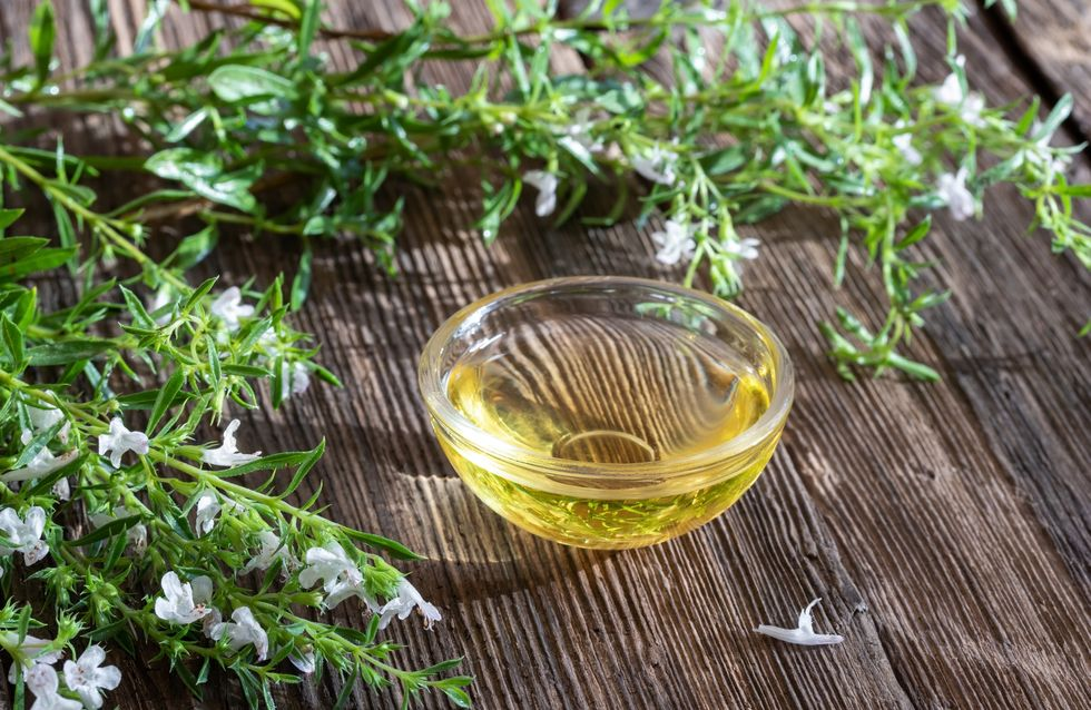 Planta medicinal, afrodisiaca y digestiva: los beneficios de la ajedrea