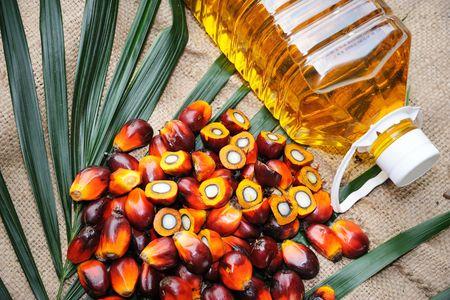 L'huile de palme est-elle réellement mauvaise pour la santé ?