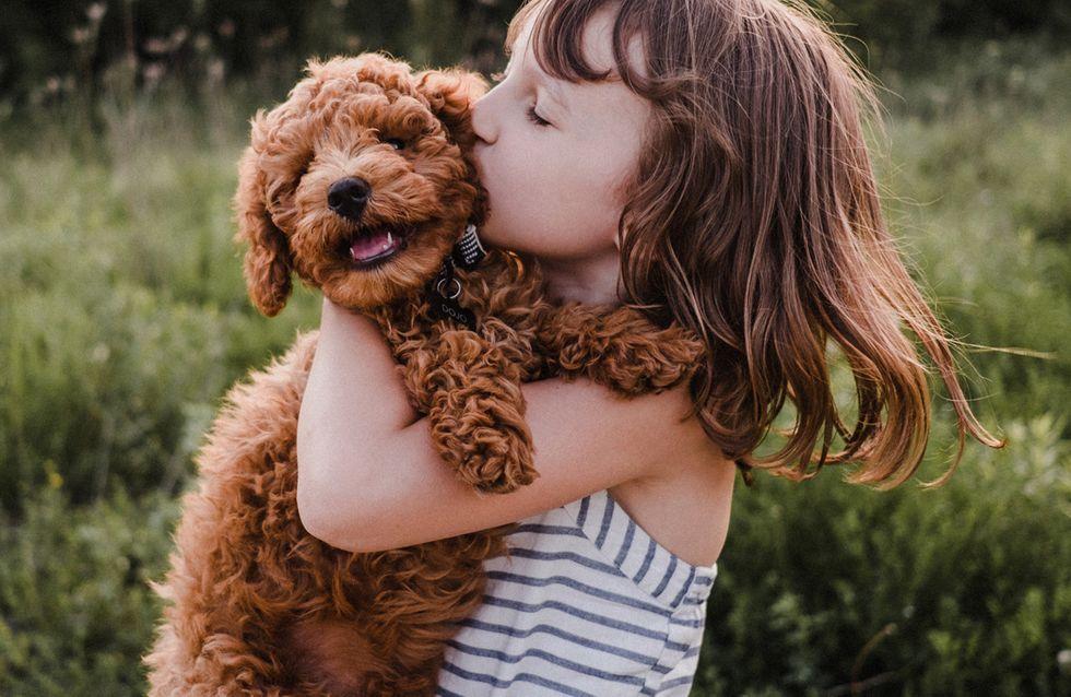 12 wichtige Regeln für Kinder im Umgang mit Hunden