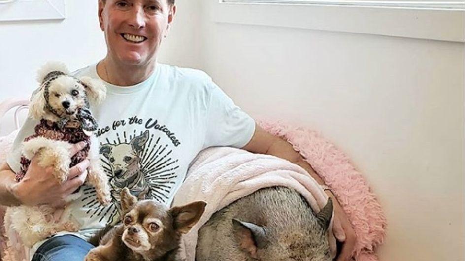 """Il a fait de sa maison un véritable refuge pour les animaux """"dont personne ne veut"""""""