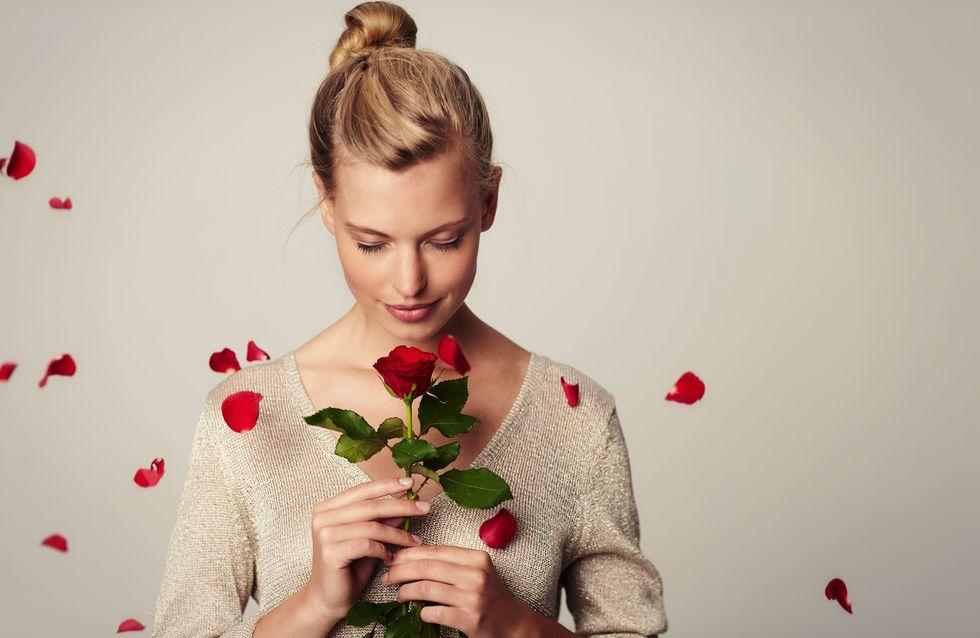 Tous les secrets des plantes et fleurs rouges