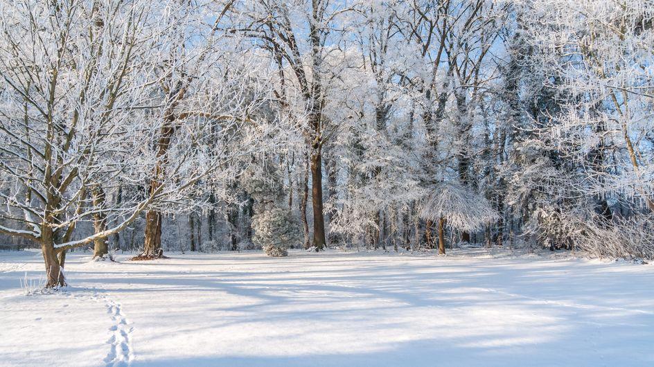 Sognare la neve: significato e interpretazioni