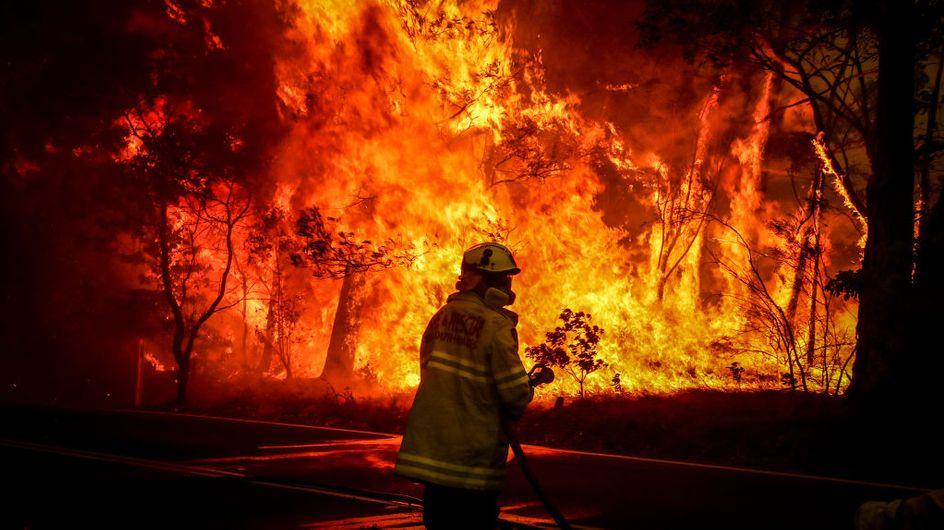 """En Australie, le """"méga-feu"""" qui ravage le pays depuis trois mois enfin maîtrisé"""