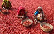 Desigualdad económica y social, brechas que afectan más a las mujeres
