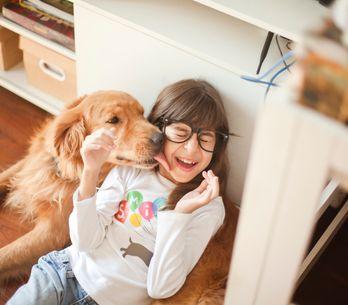 Las mejores razas de perro para vivir en familia