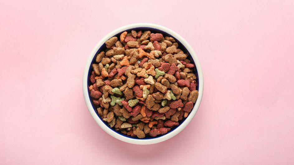 Katzen-Trockenfutter-Test 2021: Welches ist wirklich gut?