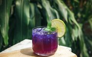Cosmic Cocktails: Dieser Drink passt zu deinem Sternzeichen