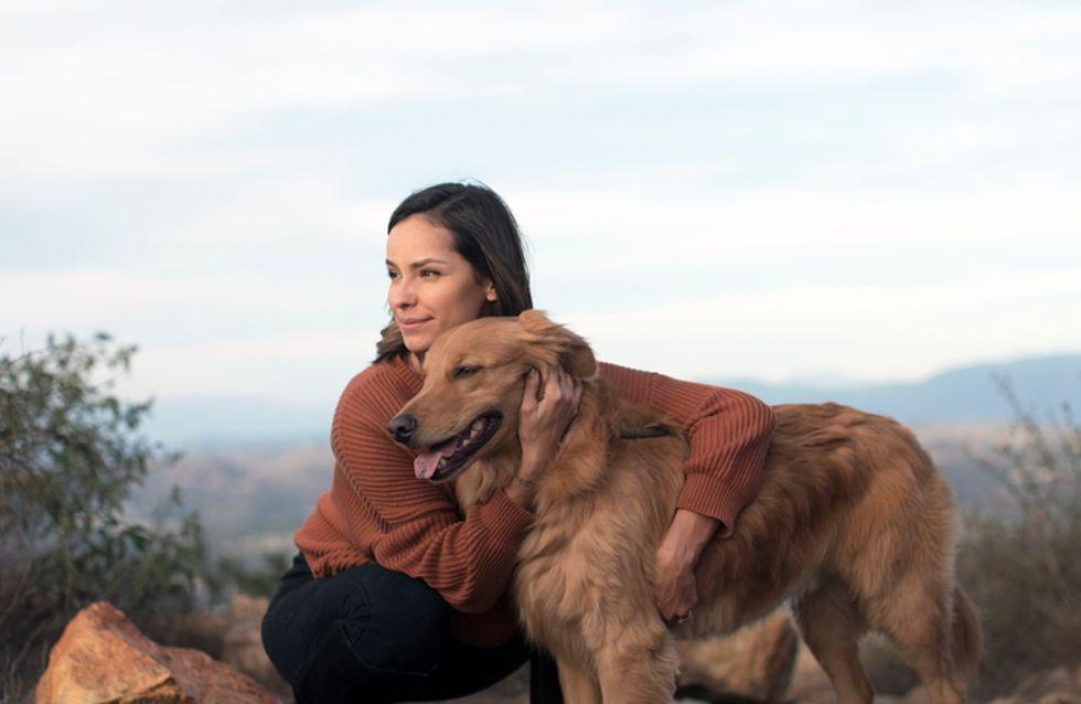 L'institut Curie s'intéresse aux aptitudes des chiens pour détecter le cancer du sein