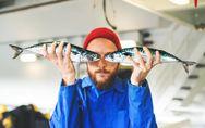 4Astuces pour consommer du poisson de manière durable