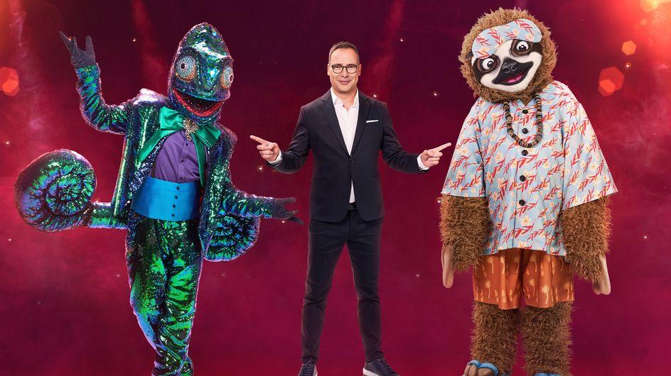 The Masked Singer: Alle Kostüme der neuen Staffel
