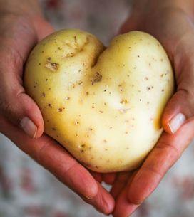 Kartoffeln aufbewahren: So halten die Knollen länger