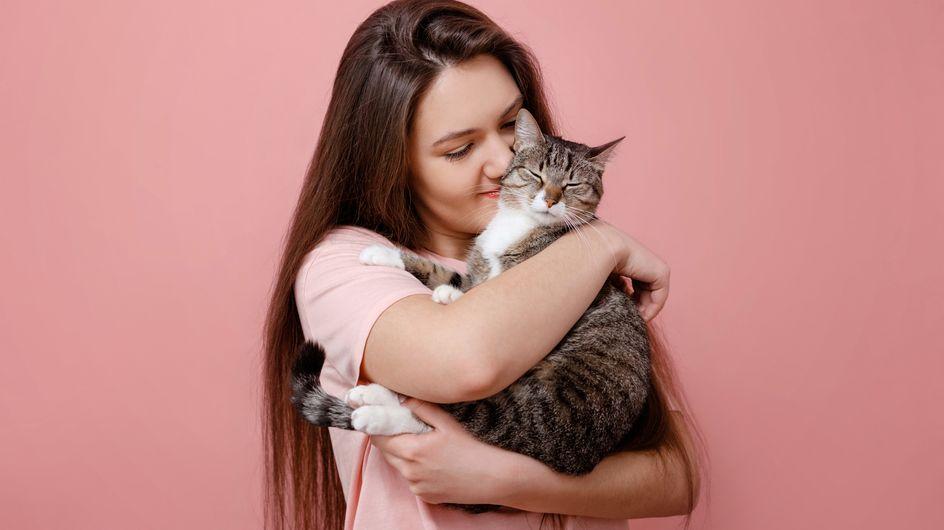 Coronavirus bei Katzen erkennen: Symptome und Übertragung