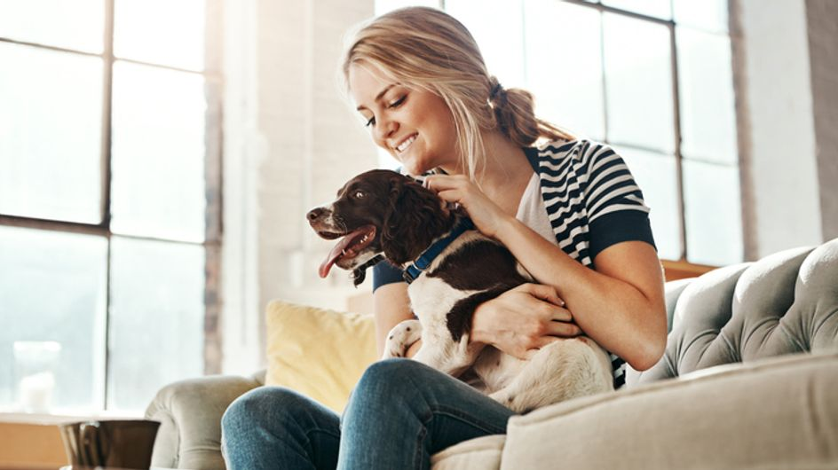 Coronavirus: 5 consigli per i proprietari di cani