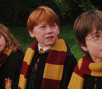 Un site Harry Potter vient de voir le jour pour s'occuper pendant le confinement