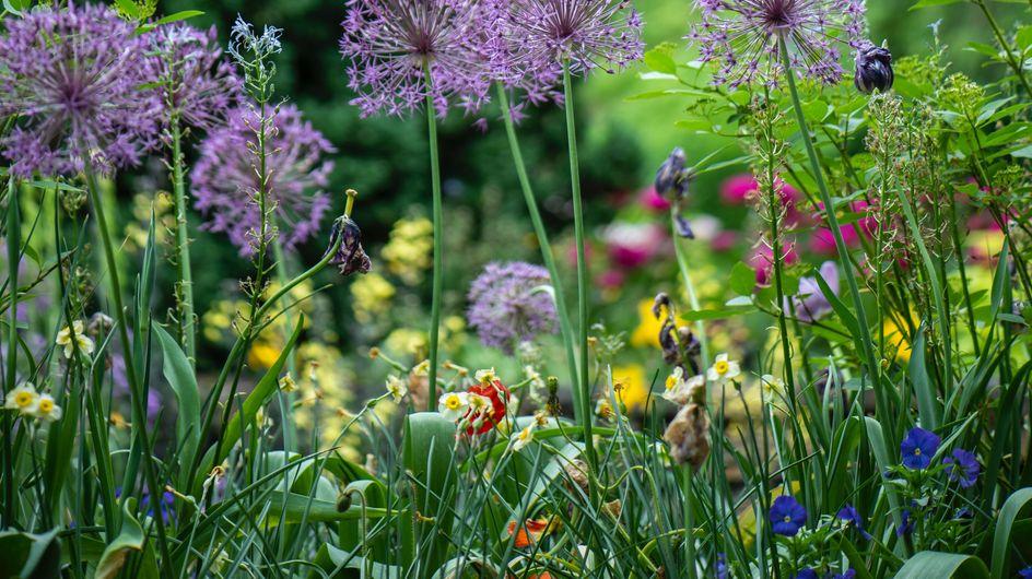 Jardinage : comment fabriquer un désherbant maison efficace ?