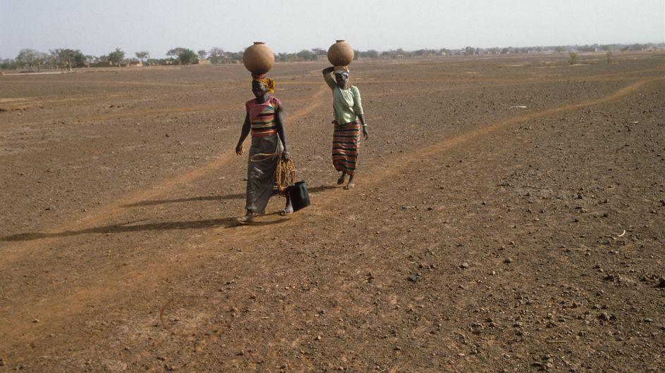 50 millions de personnes menacées par la faim en Afrique de l'Ouest