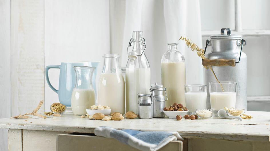 Latte vegetale: le 7 alternative sane e gustose del latte vaccino!
