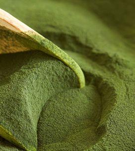 Clorella: 10 proprietà, benefici e come introdurla nella tua alimentazione
