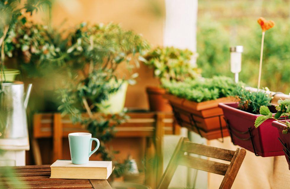 Kräutergarten auf dem Balkon: So klappt's mit dem frischen Grün