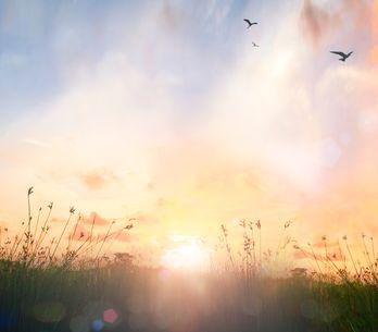 Frasi sull'alba: le più belle citazioni, aforismi e versi di canzoni di tutti i