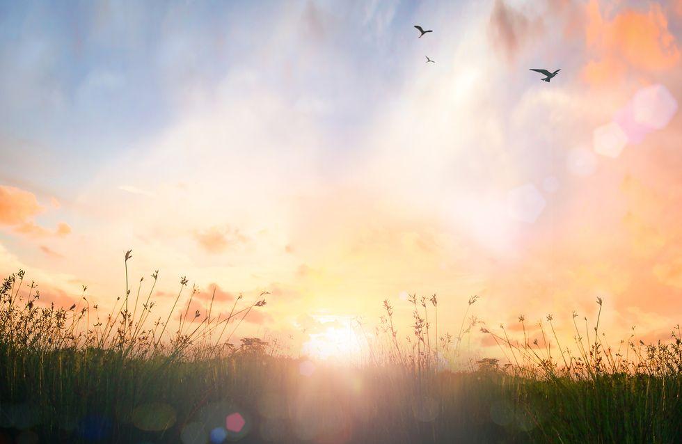 Frasi sull'alba: le più belle citazioni, aforismi e versi di canzoni di tutti i tempi