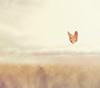 Sognare di morire: significato e interpretazioni