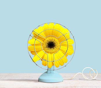 Chaleur + Covid : pouvons-nous acheter un ventilateur ?