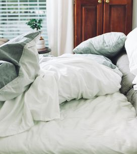 Bettwanzen erkennen und bekämpfen: So geht's!