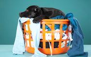 Polyester waschen: Die besten Pflegetipps für Polyesterkleidung