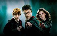 Harry Potter : Un nouveau parc d'attractions va voir le jour