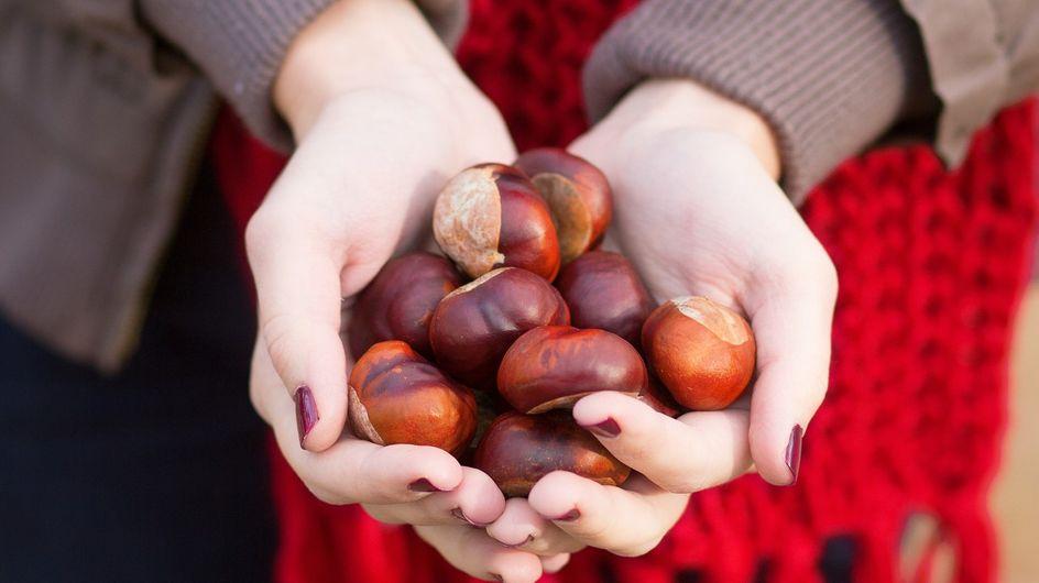 Castagne: proprietà, benefici per la salute e valori nutrizionali di frutto e farina