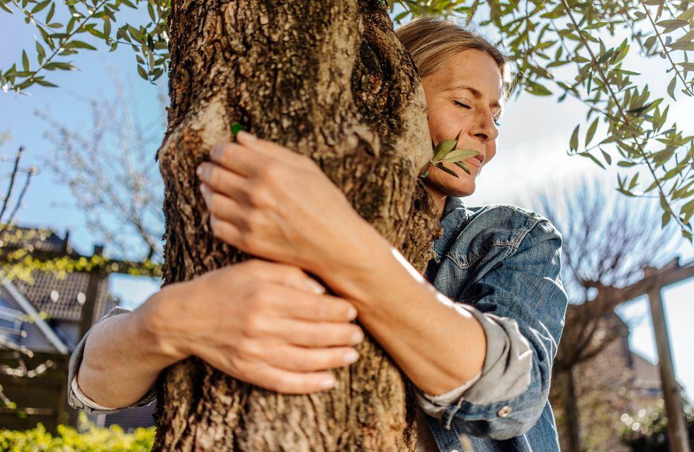 Sylvothérapie : et si on pouvait réduire son stress en forêt (et en câlinant des arbres) ?