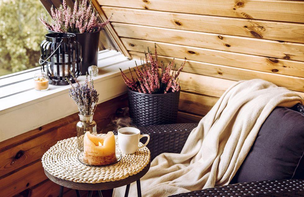 Winterharte Balkonpflanzen: Die schönsten Gewächse für die kalte Jahreszeit