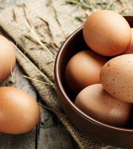 Sognare uova: significato e possibili interpretazioni